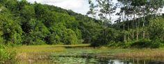 Bagagem Pronta - Passeio e Turismo: Conheça a Reserva Particular do Patrimônio Natural...
