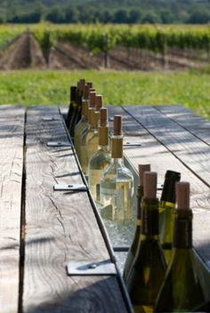 This is BRILLIANT! Picnic table with built in beverage chiller (or 2 tables pushed together with a gutter between them)