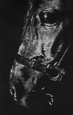 The Horse Print By Natasha Denger