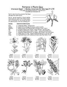 handbook of nature study yosemite autumn trip biology and nature study pinterest nature study and homeschool - Botany Coloring Book