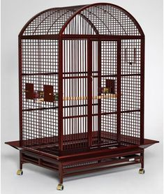 The Avian Adventures Grande Dometop bird cages are ideal cages for medium to large birds - African Greys,Cockatoos,Macaws,Toucans and Toucanets Small Bird Cage, Large Bird Cages, Small Birds, Macaw Cage, Bird Cage Design, Inside Bar, Pet Corner, Moroccan Decor, Chicken Coops