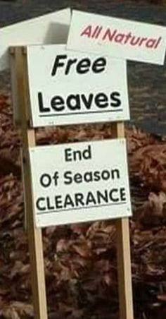 Funny Signs, Funny Memes, Funny Stuff, Funny Pictures, Good Things, Nature, Funny Things, Fanny Pics, Funny Pics