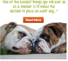 It's true - read more here :) #renspets #breeders #dogbreeds #pets