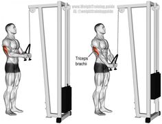 Triceps rope push-down exercise