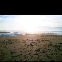Bodega Bay,CA