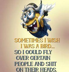 fly like a bird!!!!