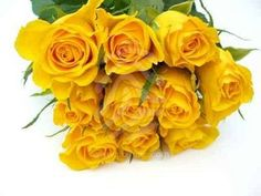 flowers, roses, yellow roses. Tim gave me these on our wedding day, my fave color!