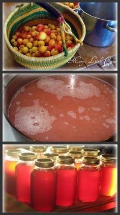 081914 crabapples (Malus) ~ Mary's Little Corner In The Woods: Crab Apple ( or Apple) Jelly Recipe Crab Apple Recipes, Jelly Recipes, Honey Recipes, Jam Recipes, Canning Recipes, Yummy Recipes, Yummy Food, Crabapple Jelly Recipe, Crab Apple Jelly