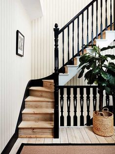 This stunning Regatta Stripe Wallpaper by Cole & Son forms part of the new elegant and sophisticated Marquee Stripes Collection. From bold, graphic super-sized stripes, to delicate, hand rendered fine lines. Perfect Living Room, House Design, Staircase Design, Wallpaper Staircase, Edwardian House, Striped Wallpaper Hallway, Stairways, Striped Wallpaper Stairs, Hall Decor