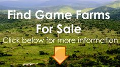 Game Farms For Sale
