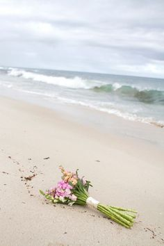 Beach  レ o √ 乇   ღ
