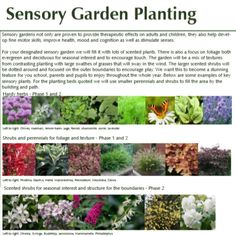 SENSORY PLANTING 😍  Here is the wonderful planting scheme that we implemented for a school in #Cheshire,  Sensory planting is proven to help development, produce therapeutic effects and improve your health, mood and cognition.  I couldn't think of a better element to add to out outdoor spaces in the current climate,  Visit our website to learn more about our services  #planting #sensory #garden #school #forestschool #woodlandgarden #outdoorlearning #development #health #heretohelp… Sensory Garden, Woodland Garden, Outdoor Learning, Forest School, Fine Motor Skills, Planting, Outdoor Spaces, Garden Design, Improve Yourself
