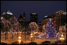 Winter evening in Rice Park