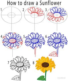 As you can see, the drawing of a flower is a matter of studying the details, deciding on the perspective and reproducing on paper.how to draw a flower drawing sunflower How To Draw A Flower (Step By Step Image Guides) Flower Drawing Tutorials, Flower Sketches, Art Tutorials, Drawings Of Flowers, Easy Flower Drawings, Makeup Tutorials, Flower Step By Step, Step By Step Drawing, How To Draw Flowers Step By Step