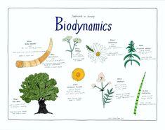 #Biodynamics Poster