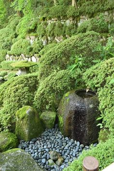 bars near water gardens Japanese Garden Landscape, Japanese Garden Design, Outdoor Water Features, Water Features In The Garden, Zen, Contemporary Garden Design, Landscape Design, Japanese Water Feature, Bonsai