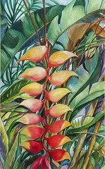 Heliconia Paintings - Heliconias  by Betty Glanville