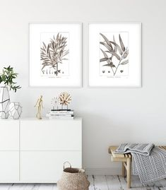 Herb Wall, Kitchen Posters, Botanical Illustration, Botany, Original Image, Vintage Kitchen, French Vintage, Fine Art Paper, Wall Art Prints