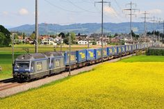 Trains and locomotive database and news portal about modern electric locomotives, made in Europe. Wall Pepar, Swiss Railways, Electric Locomotive, Europe, Crafts, Manualidades, Handmade Crafts, Craft, Crafting