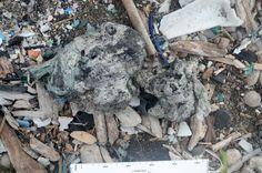 Future Fossils: Plastic Stone - NYTimes.com
