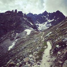 Singletrail hiking paradise Switzerland