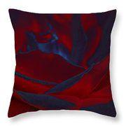 Velvet Rose Throw Pillow by Marnie Patchett