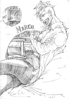 One Piece, Marco.