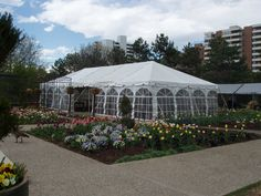 Rent A Tent, Networking Events, Dc Weddings, Summer 2016, Washington Dc, Furniture Decor, Event Planning, Wedding Decorations, Reception