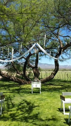 Sand Blending Ceremony Setup by: Love is Love Events Tree Decor Setup by: Elite Wedding Decor - Tucson, AZ Venue: Agua Linda Farms - Armano, AZ