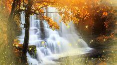 2 hours of relaxing piano music, meditation music, beautiful nature musi...