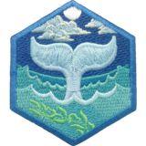 Oceanographer - DIY
