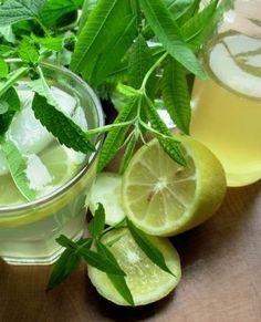 Old Fashioned Lemon Balm And Lemon Verbena Lemonade Syrup  (1) From: Food, please visit