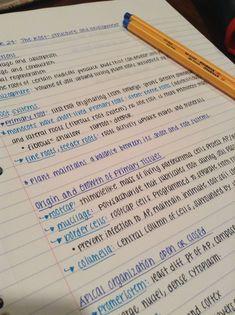 School Organization Notes, Study Organization, Life Hacks For School, School Study Tips, College Notes, School Notes, Pretty Notes, Good Notes, Handwriting Examples