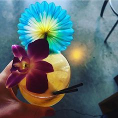 It's #tikituesday the only day of the week you can drink a Future Legend made with toasted coconut-infused whiskey passion fruit grapefruit lemon and cardamom. : @raravis90