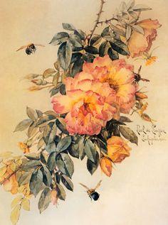 Paul de Longpré - Pale Orange Roses