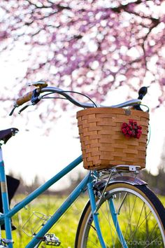It's the perfect time for a bike tour around Eastown!