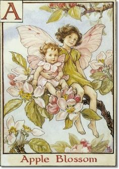 Cicely Mary Barker - The Flower Fairy Alphabet - The Apple Blossom Fairies Painting