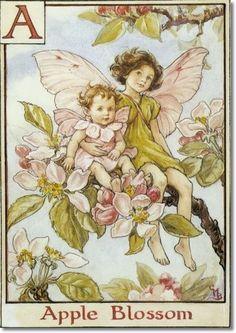 Cicely Mary Barker - The Flower Fairy Alphabet - The Apple Blossom Fairies Painting