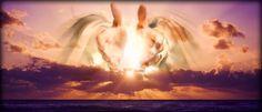 Salmos Proverbios y Citas Bíblicas: «Que ellos sean uno» Juan 17,11b-19.