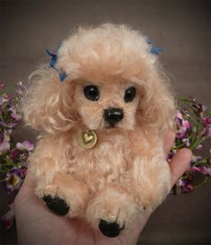Homemade Dog Toys, Teacup Puppies, Puppies Gif, Toy Poodle Puppies, Toy Poodles, Fluffy Puppies, Diy Dog Collar, Tea Cup Poodle, Best Dog Toys