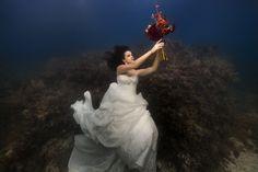 바닷속을 배경으로 찍은 경이로운 웨딩사진