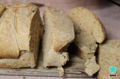 Try this moldy bread experiment, straight from our Microbe Wizard Kit on Bread, Cheese & Fruit. Let's learn about microbes that like bread using dipslides! Yeast Bread Recipes, Cheese Fruit, Lactose Free, Bread Rolls, Low Carb Diet, Sin Gluten, Gluten Free Recipes, Holiday Recipes, Food And Drink
