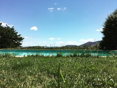 Pool with view.  #Green #view #mountains #pool #grass #bluesky #sunnyday #portugal #douro by noemieeimeon