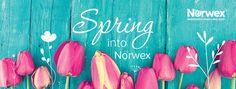 Norwex Consultant Facebook Banner
