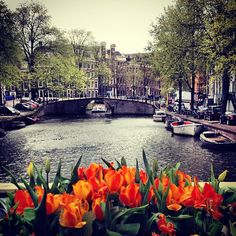 Amsterdam - North Holland