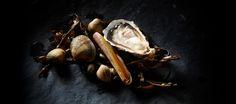 Culinaire fotografie Seafood - Tobias Reymond Foto | Film - Fish