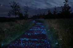 Van Gogh's 'The Starry Night' is the Inspiration for This Glowing Bicycle Path