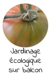 Permaculture sur balcon #1   Clémentine la Mandarine