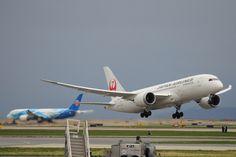 Double Dreamliner