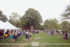 Overall photo of what cocktail hour looks like on the lawn at the Elm Bank Horticulture Center in Wellesley, MA for a wedding.  Love all of the giant old trees!